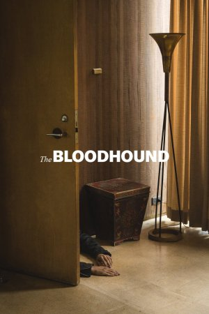 The Bloodhound